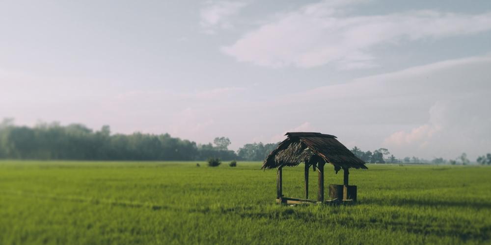studnia w polu