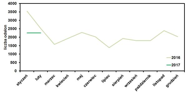 statystyki oglądalności bloga operator-paramedyk w styczniu 2017