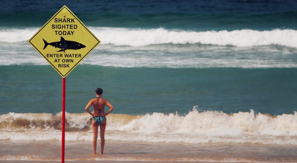 naucz się oceniać ryzyko przed działaniem, zdjęcie: lubo-minar@unsplash.com, CC-0